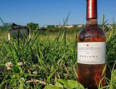 Обзор Nuviana Cabernet Sauvignon - Tempranillo Rosado 2015