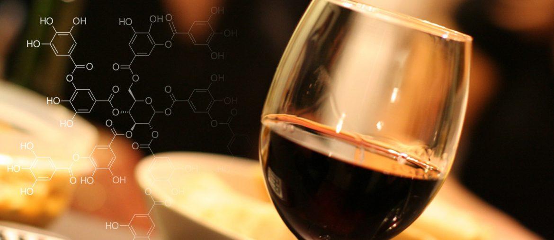 химия вина - танины