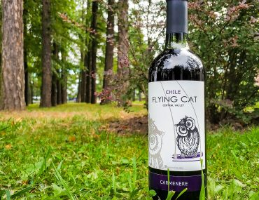 Viña Requingua Flying Cat Carmenere обзор и дегустация
