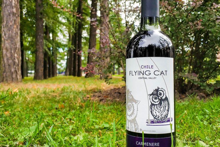 Viña Requingua Flying Cat Carmenere обзор и дегустация