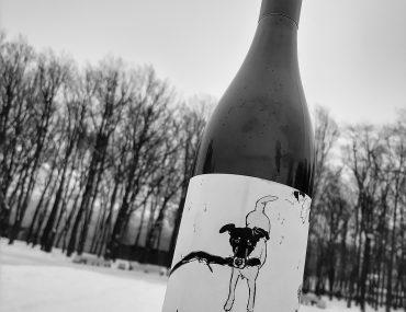 Shelter Lovely Lilly Pinot Noir 2016 отзыв на вино