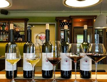 Дегустация вин Бюрнье в «Люблю: Led. Wine. Love's»
