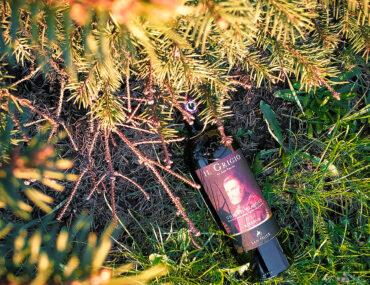 Вино из фильма Ганнибал: Il Grigio Chianti Classico Riserva, 2015