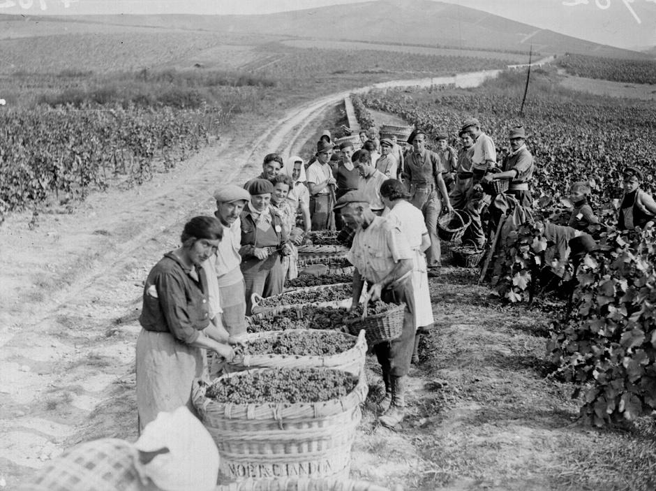 шампанское во время второй мировой