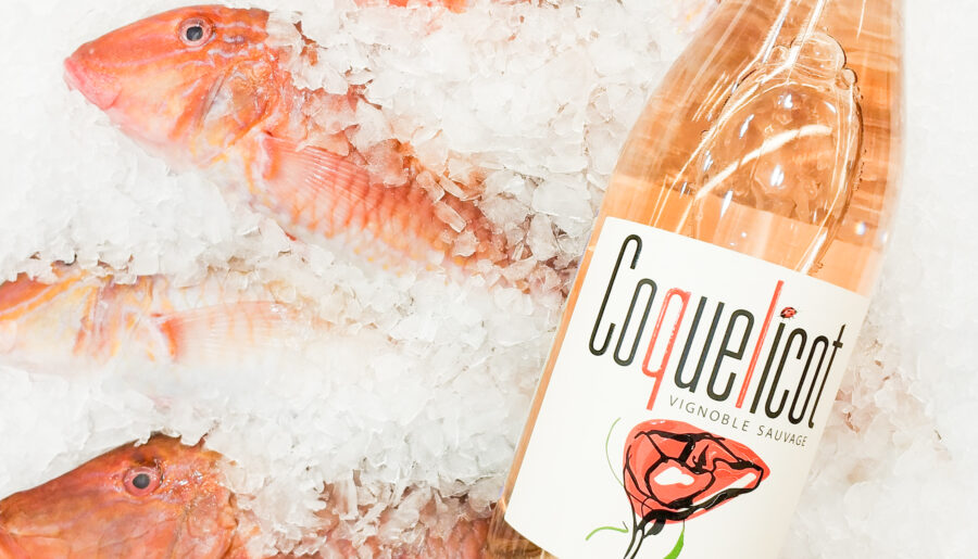 Вино к рыбе: гид по правильному сочетанию