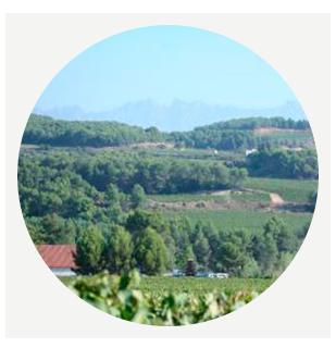 Винодельческий регион Кава