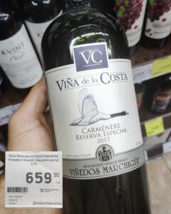 Обзор Viña de La Costa Reserva Especial Carmenère