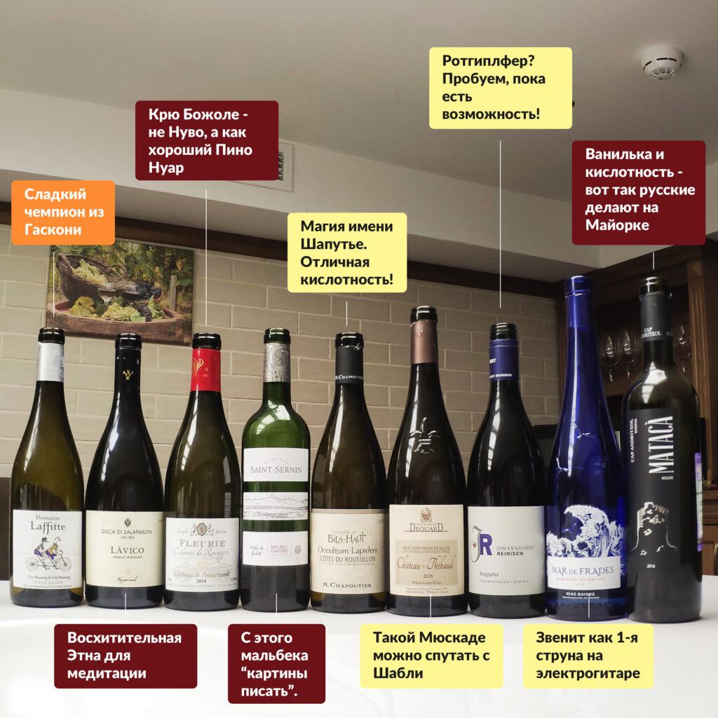 9 небанальных европейских вин, о которых вы не знаете