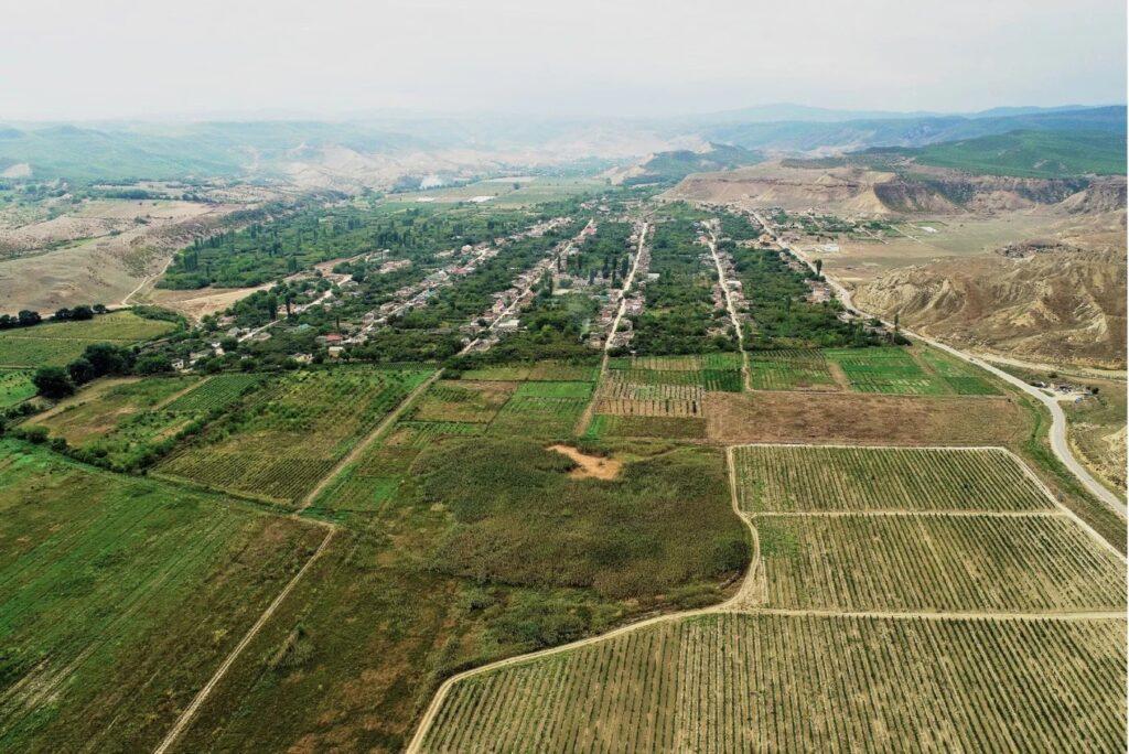 Дербентская винодельческая компания