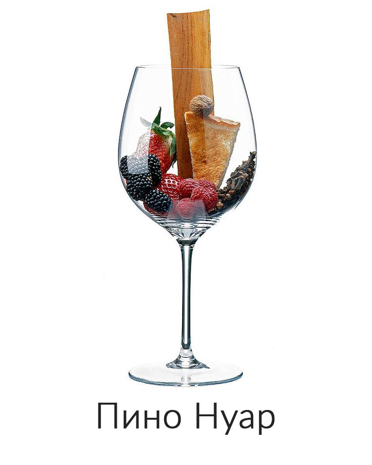 Пино Нуар ароматы