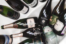 Все об игристых винах: Теория и практика